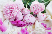 Pink peonies and white wedding dress — Stockfoto
