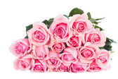 Bouquet of fresh pink roses — Stock Photo