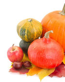 Raw pumpkins and fall leaves — Stock Photo