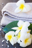 Spa and wellness setting — Stock Photo