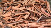 Cinnamon on the farm — Stock Photo