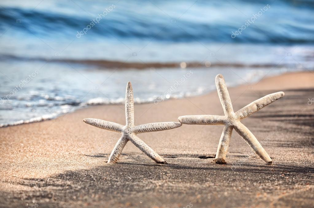 Two funny starfishes on the sandy beach at ocean background — Stock Photo #12515241