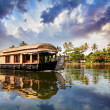 House boat in backwaters — Stock Photo #13526088