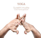Surabhi mudra — Stock Photo