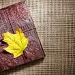 Diary and maple leaf — Stock Photo