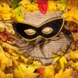 Halloween mask — Stock Photo #13811703