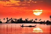 тропический закат — Стоковое фото