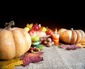Thanksgiving day harvest — Stock Photo
