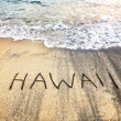 Hawaii on the sand - Stock Photo