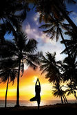 Yoga tree pose around palm trees — Stock Photo