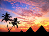 Egyptian Pyramids and palm trees — Stock Photo