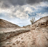 Dry earth and overcast sky — Stock Photo