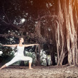 Yoga near banyan tree — Stock Photo #34724491