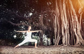 Yoga near banyan tree — Stock Photo