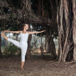 Yoga near banyan tree — Stock Photo #39289119