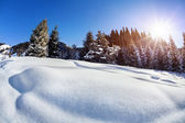 Panoramica invernale — Foto Stock
