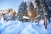 Winter mountain scenery — Stok fotoğraf
