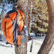 Backpack in the mountains — Stock Photo