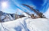 Winter mountain scenery  — 图库照片