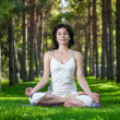 Постер, плакат: Meditation in the park