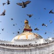 Bodhnath stupa with flying birds — Stock Photo #46409845