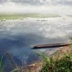 Boat in Chitwan — Stock Photo #48875859