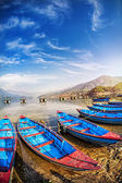 Boats in Pokhara lake — Stock Photo