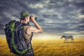 Tourist and zebra — Stock Photo