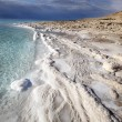 View of Dead Sea coastline at sunset time — Stock Photo #15410163
