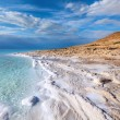 View of Dead Sea coastline at sunset time — Stock Photo #15410175