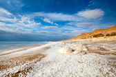View of Dead Sea coastline — Stock Photo