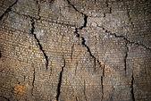 Vieja madera agrietada textura — Foto de Stock