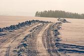 Estrada de inverno — Foto Stock