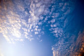 Cirrus — Stock Photo