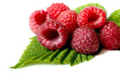 Ripe raspberry on the white background — Stock fotografie