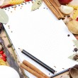 Notebook for recipes and spices — Stock Photo #13947288