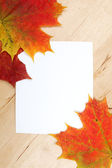 Autumn leaves with paper sheet on wooden background texture — Stock Photo