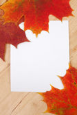 Autumn leaves on wooden background texture — Stok fotoğraf