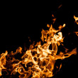 Stock Photo: Fire flames on black background
