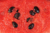 Slice of watermelon as food background — Stock Photo