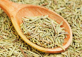Rosemary in wooden spoon and over as background — Stock Photo