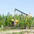 Stock Photo: Oil pump works on spring forest background
