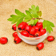 Hawthorn berries on burlap background — Stock Photo #32523353