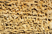Beautiful yellow sandstone surface background — Stock Photo