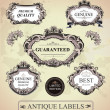 Vintage framed labels — Stock Vector