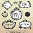 Vintage framed labels — Stock Vector #18016071