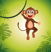 Monkey — Stock Vector