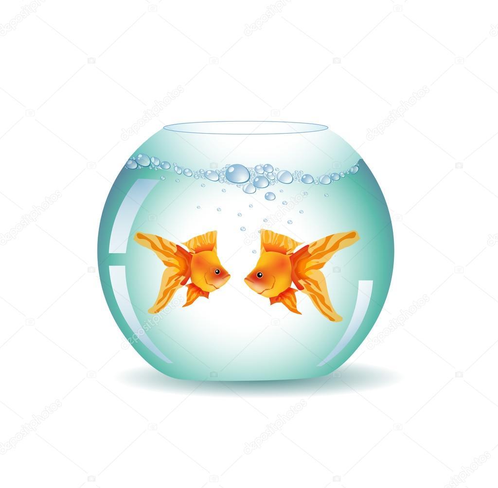 Pesci rossi boccia vettoriali stock alessandram 28094219 for Vaschetta per pesci rossi prezzi