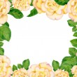 Hand-drawn frame with golden roses — Stock Photo #28971695
