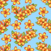 Hand-drawn plumeria seamless pattern — Stock Photo